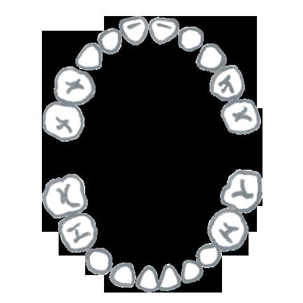 歯並び(子ども)のイラスト画像