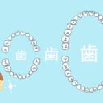 歯関連のイラスト-無料素材
