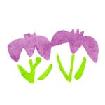花菖蒲のイラスト
