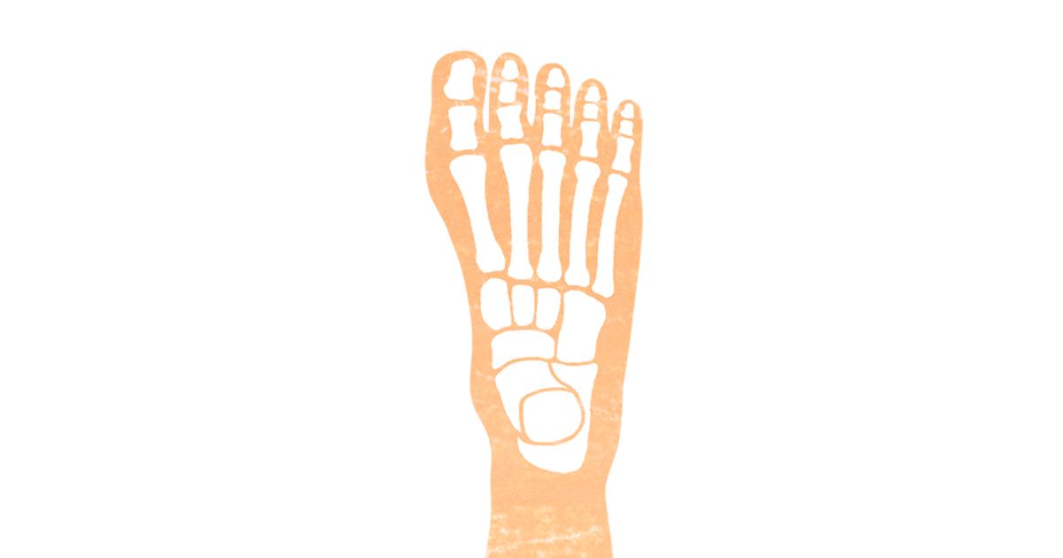 足の骨の無料イラストアイキャッチ画像