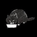 ゴハンを食べている黒猫のイラスト画像