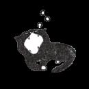 あくびをする黒猫のイラスト画像