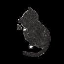 後ろ足で掻いているいる黒猫のイラスト画像