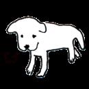 白い犬がしょんぼりしているイラスト画像