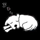 白い犬が丸まって眠っているイラスト画像