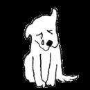 白い犬が泣いているイラスト画像