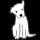 白い犬が首をかしげているイラスト画像