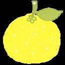 商用利用もOKな無料イラストサイト【フリー素材ずーあん】の無料柚子(冬至)イラスト